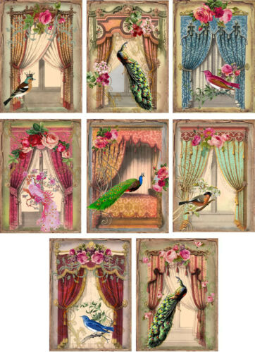 Vintage inspired peacock birds french windows cards tags set 8 with envelopes