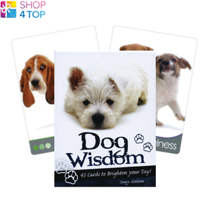 Dog-Wisdom-Deck-Cards-Esoteric-Fortune-Telling-Blue-Angel-New