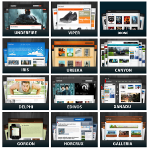 1250-WordPress-Themes-with-PLR-9000-Unrestricte-PLR-Articles-150-eBooks-cd-n
