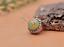 10X-10mm-Antique-Flower-Turquoise-Conchos-Leather-Crafts-Bag-Wallet-Decoration miniature 45