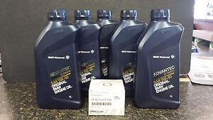 bmw motorcycle oil change kit - k1600 bmw 05w-40 advantec