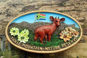 Table-Mountain-Nature-Reserve-South-Africa-Tourist-Souvenir-3D-Fridge-Magnet