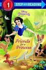 Friends for a Princess (Disney Princess) by Melissa Lagonegro (Hardback, 2016)