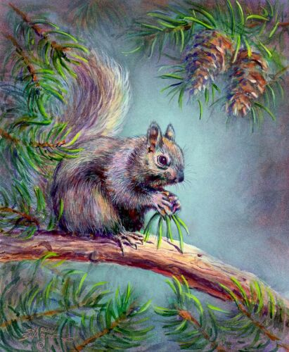 ATC Limited Edition SQUIRREL  by Sharon Sharpe!!! ACEO