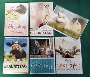 100x Geburtstagskarten 017st Glückwunsch Karten Geburtstag Tiere