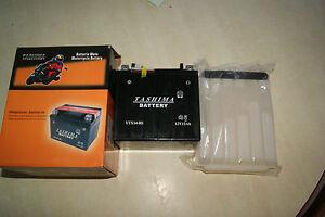 batterie-neuve-tashima-12-v-6-AH-model-YTX7L-BS-avec-entretien