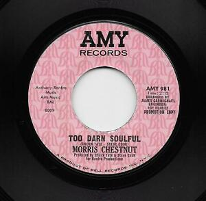 Morris Chestnut - Too Darn Soulful / You Don't Love Me Anymore (Soul, 45) 981