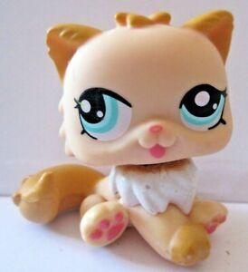 """Figurine De Collection Petshop Pet Shop Lps """" # 1320 Chat Persan A Texture Nette"""