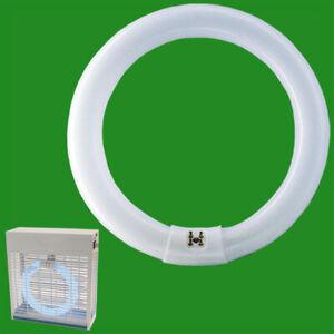4x 22 W T9 Circulaire Uv Ultraviolet Tube Blacklight Insect Killer Ampoule Bl368 G10q-afficher Le Titre D'origine