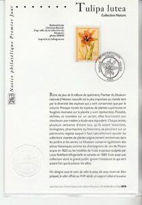 notice-philatelique-1er-jour-nature-flore-fleur-tulipa-lutea-2000
