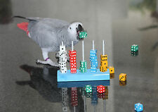 Würfel aus Acryl für Papageien Freisitz TRAINING Papageienspielzeug **NEU**