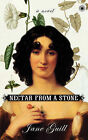 Nectar from a Stone by Jane Guill (Paperback, 2005)