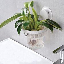 Creative Suction Cup Water Hanging Flower Pot Plants Pots Indoor ...