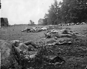 New-8x10-Civil-War-Photo-Dead-at-Rose-Woods-after-the-Battle-of-Gettysburg