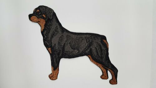 """Rottweiler Dog Embroidered Patch Approx Size 5.5/"""" x 6.4/"""""""