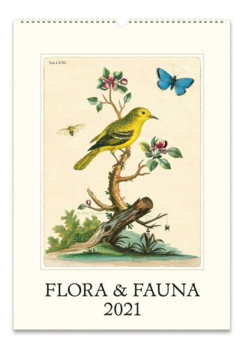 33x48.3cm 2021 Wandkalender Flora /& Fauna Cavallini