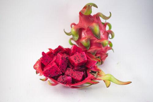 75 Graines de Pitaya Rouge Fruit du Dragon Méthode BIO seed jardin cactus
