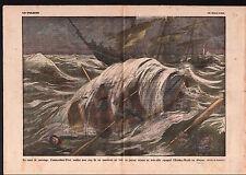 Baleinière Cristina Rueda canot de sauvetage Commandant-Viort  1925 ILLUSTRATION
