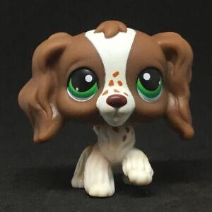 156 Littlest Pet Shop Lovely Green Eyes Cocker Spaniel Dog Brown Girls Lps Toy Ebay