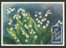 SAN MARINO MK 1957 FLORA MAIGLÖCKCHEN LILY MAXIMUMKARTE MAXIMUM CARD MC CM d8063