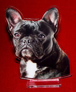 statuette-photosculptee-10x15-cm-chien-bouledogue-francais-17-dog-hund-perro