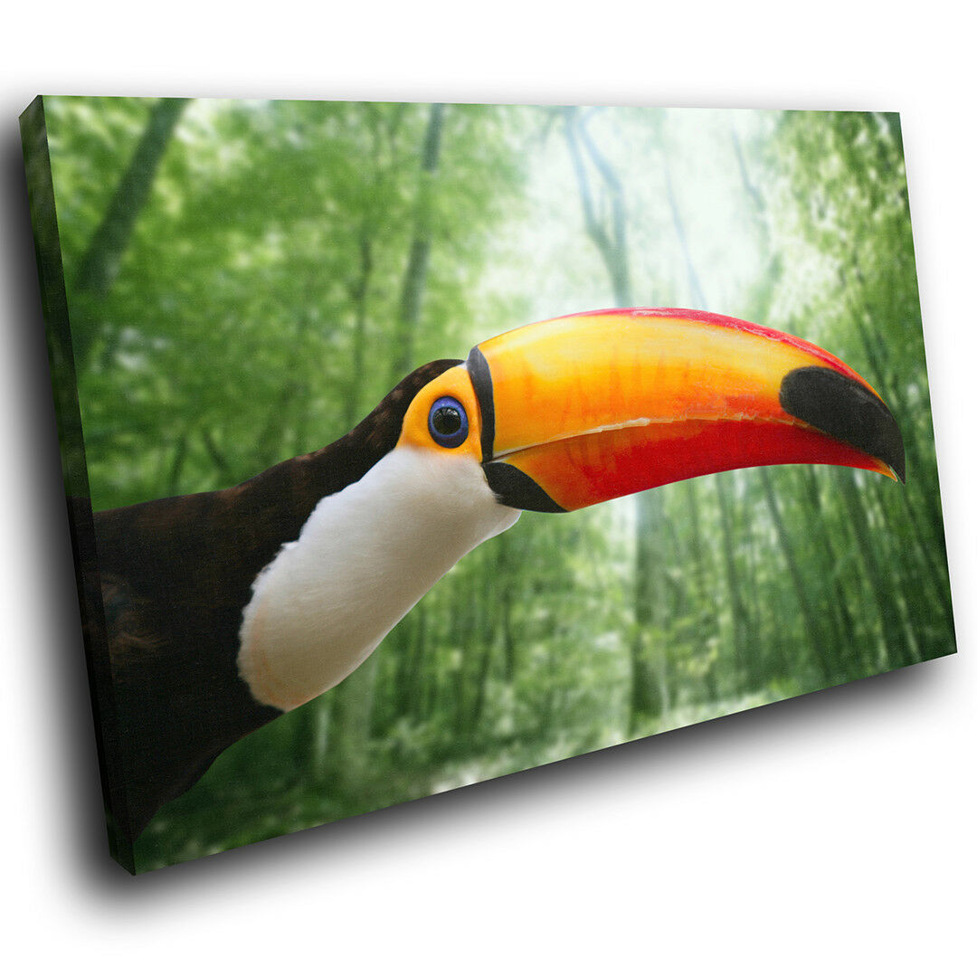 A129 Orange Grün Toucan Forest   Funky Animal Canvas Wall Art  Picture Print