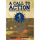 a Call to Action Common Sense for Our Time Hardcover – 5 Nov 2010