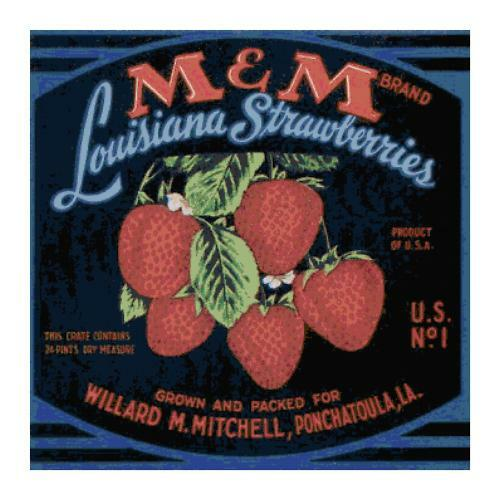 Vintage Louisiana Strawberry Label DIGITAL Counted Cross Stitch Pattern Chart