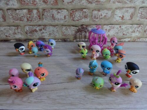 Littlest PET SHOP Birds PICCHIO Puffin PAVONE Pappagallo Agapornis Parrot ecc.
