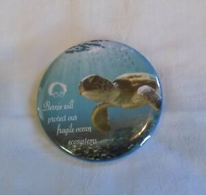 Bernie Will Protect Our Fragile Ocean Ecosystems Sanders Turtle Pin-back Button