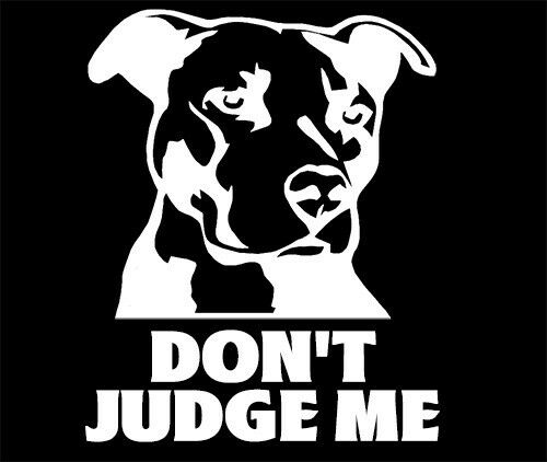 """/""""Don/'t Judge Me/"""" Pit decal Sticker,Breed,Bully,Cute Dog Pit Bull,Puppy 4x4 inch"""