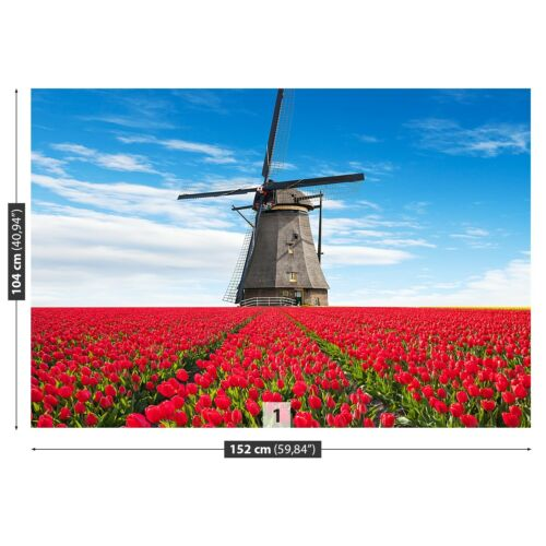 Non woven Wall Mural Photo Wallpaper Poster Picture Image Tulips Windmill