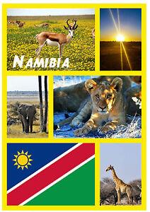 Namibia-Suedafrika-Souvenir-NEUHEIT-Kuehlschrank-Magnet-Sehenswuerdigkeiten