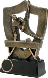 5-1-2-034-Male-Gymnastics-Award-RRP-8-99-engraved-and-postage-free
