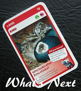Non Sports Trading Cards Non-Sport Trading Cards & Accessories WoolworthsCARD 13/36 LAND Emu