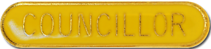 Councillor Pin Badge in Yellow Enamel With Rounded Edge
