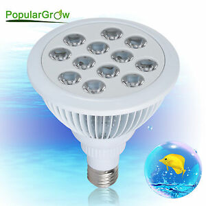 PopularGrow 12W LED Aquarium Light Bulb Fish Tank Reef LPS SPS Coral Plant Lamp