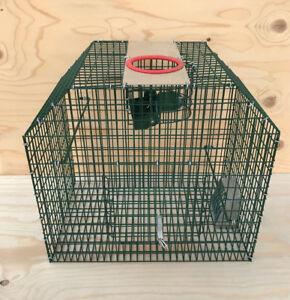 Kleinvogelkäfig und Rattenfalle Vogelfalle Kieferle Lebendfalle 000.073
