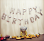 """17/""""…""""Happy Birthday"""" Foil Alphabet Letters Balloons Party Decoration 13 Pieces"""