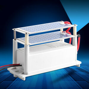 Ozone Generator Car Ozonizer Ceramic Sterilizer Plate Air Purifier Kit 10g//h 12V