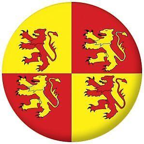 Owain Glyndwr Flag Pin Button Badge Magnet Keyring Bottle Opener Mirror