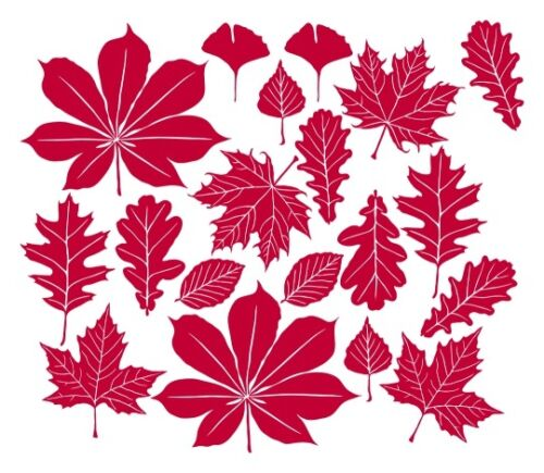 highest quality wall decal stickers Details about  /Autumn Falling Leaves