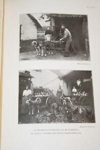 """BELGIQUE LA VALLEE DU MAELBEEK MONOGRAPHIE ETTERBEEK ILLUSTRE DE PAUW 1914 RELIE - France - Commentaires du vendeur : """"voir détail de l'annonce"""" - France"""
