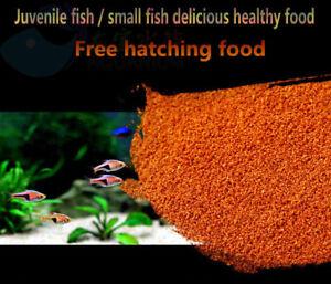 Sunaun Aquarium Decapsulated Brine Shrimp Eggs Tropical Fish Cichlid