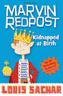 Kidnapped at Birth by Louis Sachar (Paperback, 2010)
