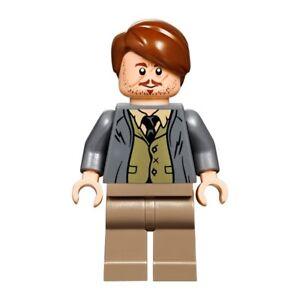 LEGO Harry Potter DEMENTOR MINIFIGURE Split From Hogwarts Express 75955
