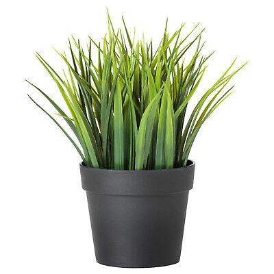 1 Ikea Fejka 20cm Erba Artificiale Vaso Pianta Verde Plastica Nero Finto Facile E Semplice Da Gestire