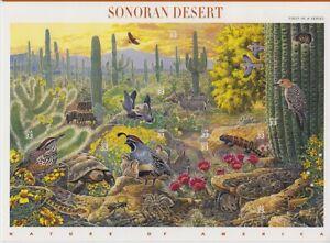 1999-1st-Nature-of-America-33c-Sc-3293-sheet-of-10-Sonoran-Desert