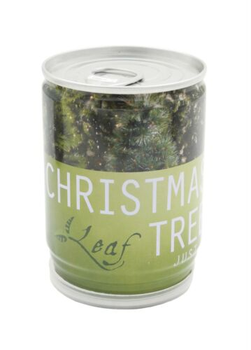 Grow Your Own Christmas Tree In A Can Tin Kids Child Gift Plant Kit