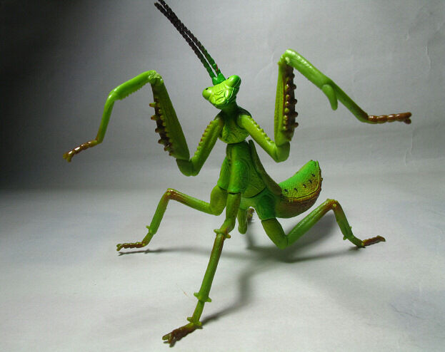 4D Insect Puzzle Toy / Figure MANTIS